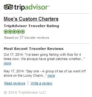 Moe\'s Custom Charters