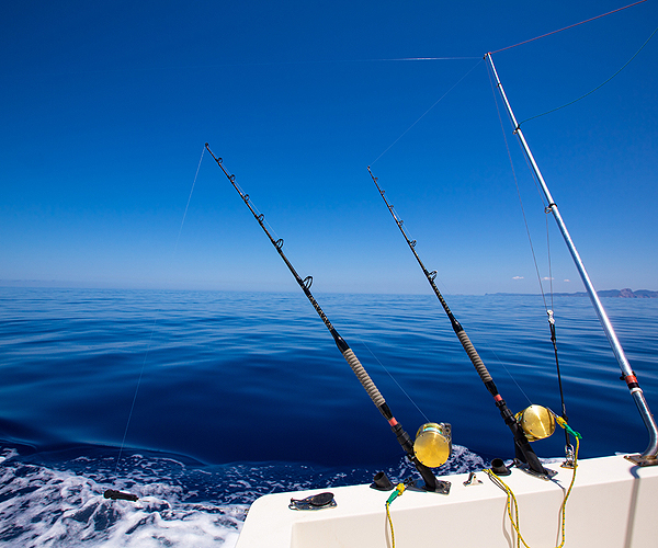 Fishing Charters Florida Keys