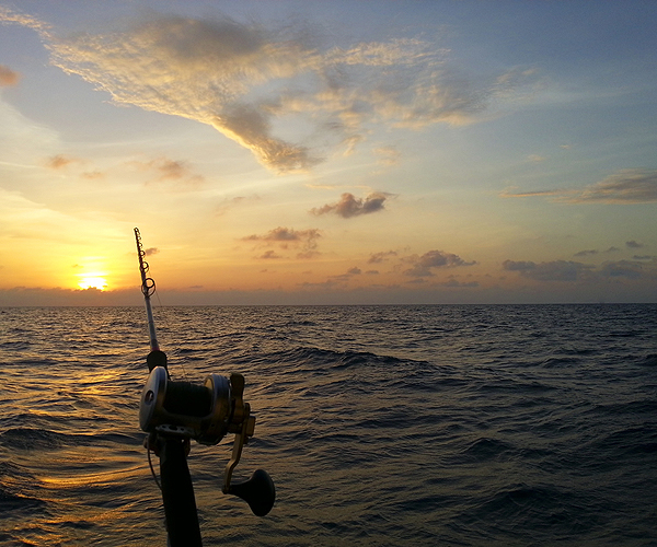 Key West Charter Fishing