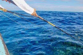 Photo of a fisherman reeling in a fish on one of Captain Moe's Lucky Fleet's boat rentals